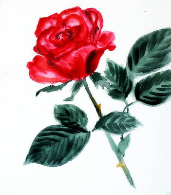 Painting - Red Rose by Donna Walsh