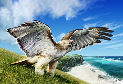 Hawk Digital Art - Red-tailed Hawk by Owen Bell