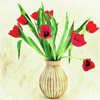 Red Tulips Art Print by Angela Doelling AD DESIGN Photo and PhotoArt