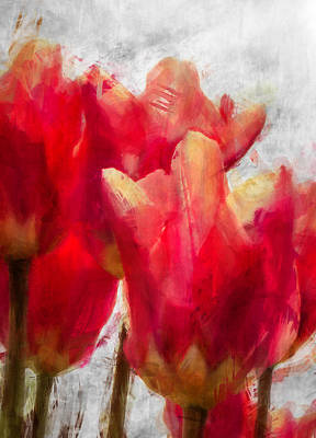 Photograph - Red Tulips by Celso Bressan