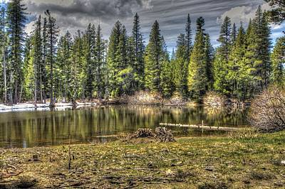 Tree Photograph - reflecting pond 3 at Carson Spur by SC Heffner