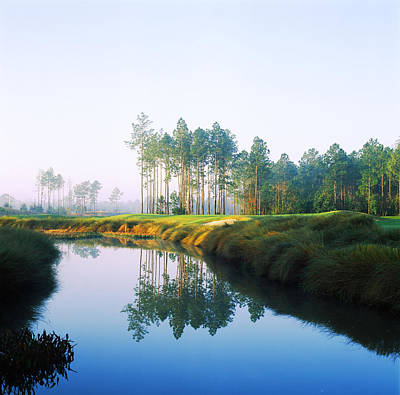 Reflection Of Trees On Water In A Golf Art Print by Panoramic Images
