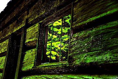 Cabin Window Digital Art - Reflections Of The Past by David Lee Thompson