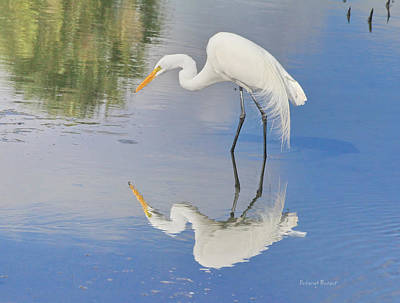 Reflective Pose Art Print