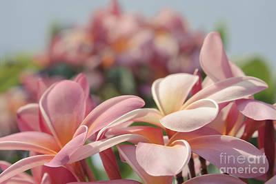 Digital Art - Reminiscence by Sharon Mau