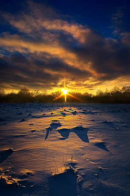 Red Leaves Snow Wall Art - Photograph - Resting In Peace by Phil Koch