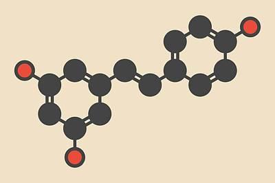 Resveratrol Molecule Art Print by Molekuul