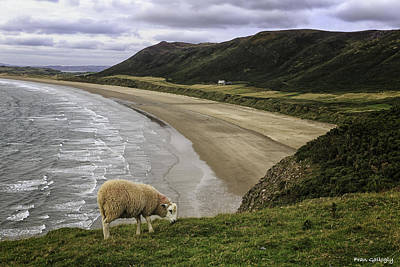 Photograph - Rhossili Bay by Fran Gallogly