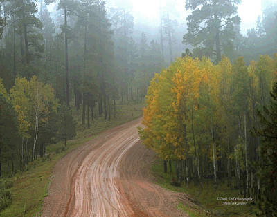 Photograph - Rim Road by Matalyn Gardner