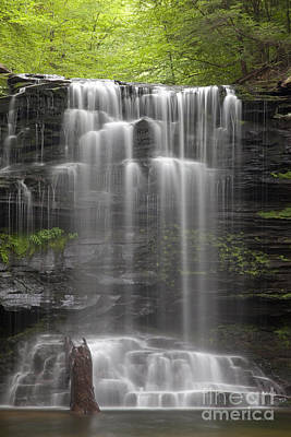 Photograph - R.i.p. Weeping Wilderness Waterfall by John Stephens