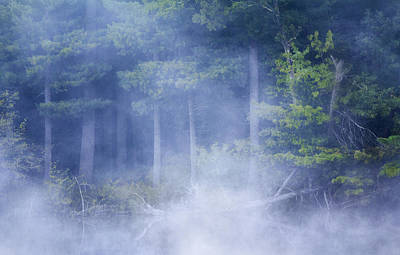 Photograph - Rising Mist by Barbara Smith