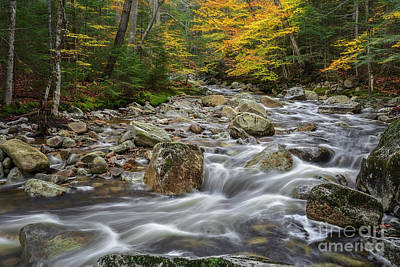 Photograph - River Flow by Sharon Seaward