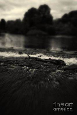Photograph - River Wye - Peak District - England. by Doc Braham