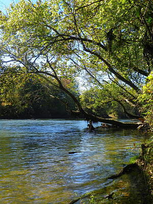 Photograph - Rivers Edge 2 by Lisa Wooten
