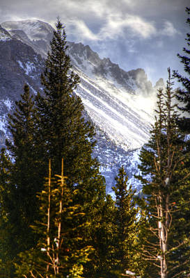 Jerry Sodorff Royalty-Free and Rights-Managed Images - Rmnp 4501 by Jerry Sodorff