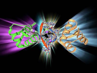 Rna-editing Enzyme Art Print