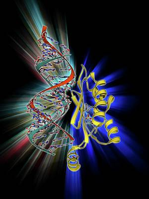 Rna Interference Viral Suppressor And Rna Art Print