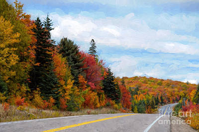 Photograph - Road Through Algonquin Park  by Les Palenik