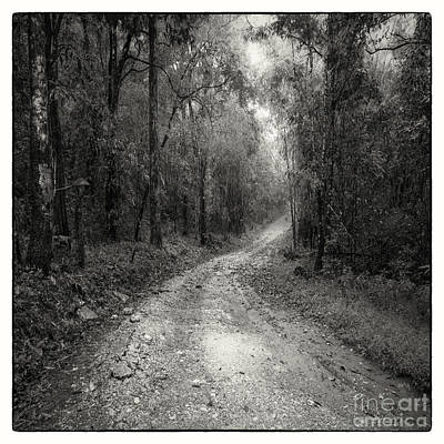 Road Way In Deep Forest Art Print