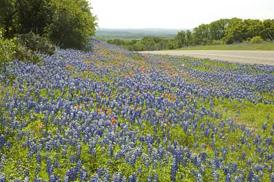 Kingsland Photograph - Roadside Blue by Robert Anschutz
