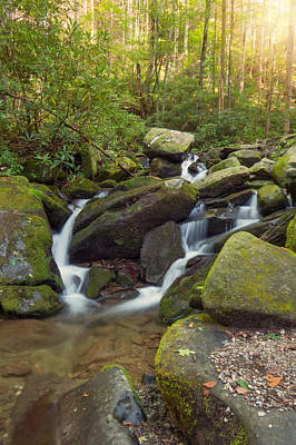 Photograph - Roaring Forks by Cindy Haggerty