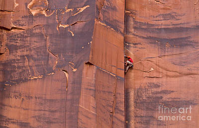 Photograph - Rock Climber Indian Creek Utah by Yva Momatiuk John Eastcott