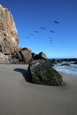 Point Dume Wall Art - Photograph - Rock Formations On The Beach, Point by Animal Images