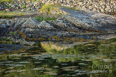 Rocks At Scotland Loch Art Print by Iris Richardson