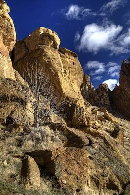 Photograph - Rockscape by Coby Cooper