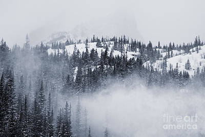 Steven Krull Royalty-Free and Rights-Managed Images - Rocky Mountain National Park by Steven Krull
