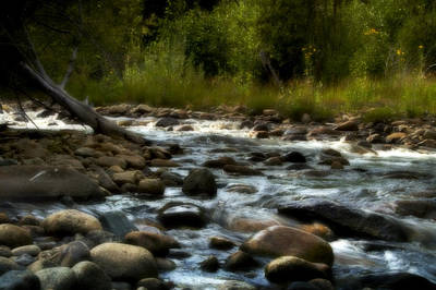 Photograph - Rocky Mountain Stream by Ellen Heaverlo
