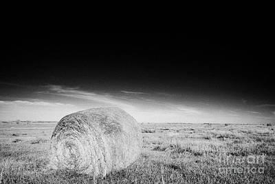 rolled hay bales in rural prairie grassland open fields bengough Saskatchewan Canada Art Print by Joe Fox