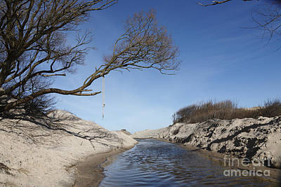 Denmark Photograph - Rope Hanging From Sinister Tree Over Stream And Steep Sand Banks by Niels Quist