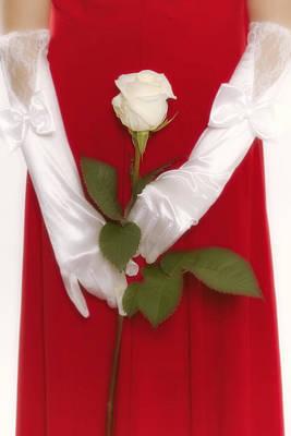 Rose Art Print by Joana Kruse
