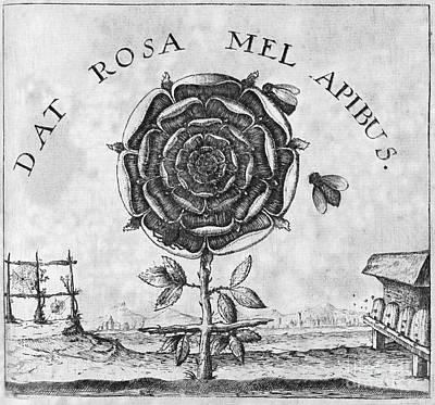 Rosicrucian Mystical Symbol Art Print