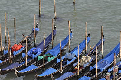 Photograph - Row Of Empty Moored Gondolas by Sami Sarkis