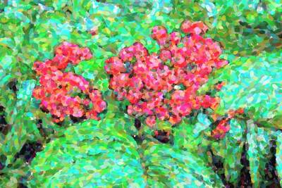 Pointilism Photograph - Rowan Berries by Tommytechno Sweden
