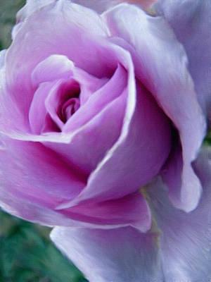 Painting - Royal Rose by Dennis Buckman
