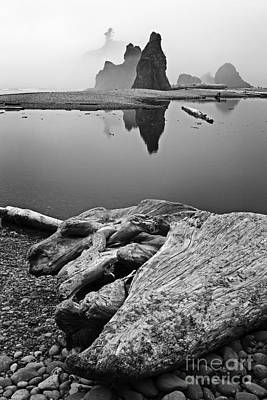 Photograph - Ruby Beach 4 by Sonya Lang