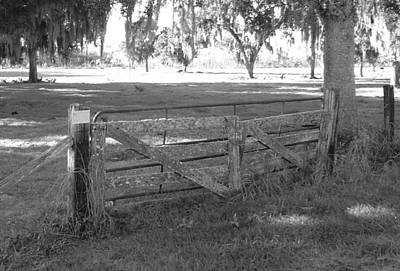 Photograph - Rugged Old Fence 2 by Cheryl Waugh Whitney