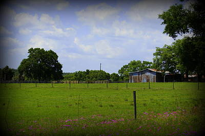 Photograph - Rural Florida by Laurie Perry