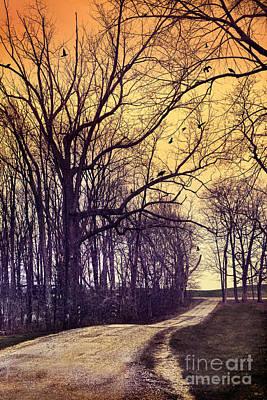 Photograph - Rural Road by Jill Battaglia