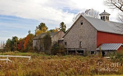 Rural View Art Print