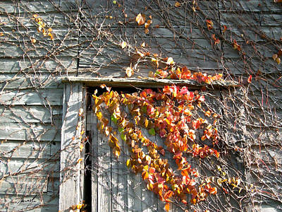 Photograph - Rustic Door 2 by The Art of Marsha Charlebois