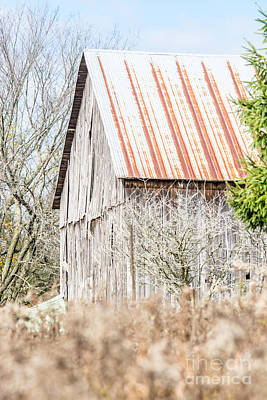 Photograph - Rustic Old Barn by Cheryl Baxter