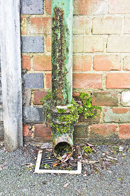 Old Plumbing Photograph - Rusty Drainpipe by Tom Gowanlock