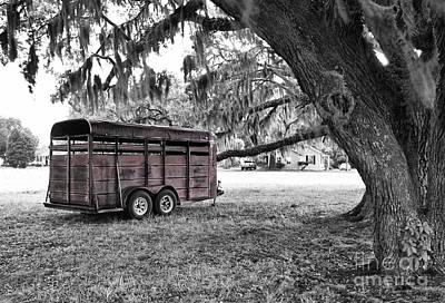 Photograph - Rusty Horse Trailer Under The Live Oak by Scott Hansen