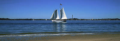 Cape Cod Photograph - Sailboat In Ocean, Provincetown, Cape by Panoramic Images