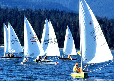 Photograph - Sailboat Regatta by Robert  Rodvik