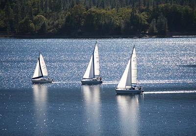 Photograph - Sailboats by Catherine Link